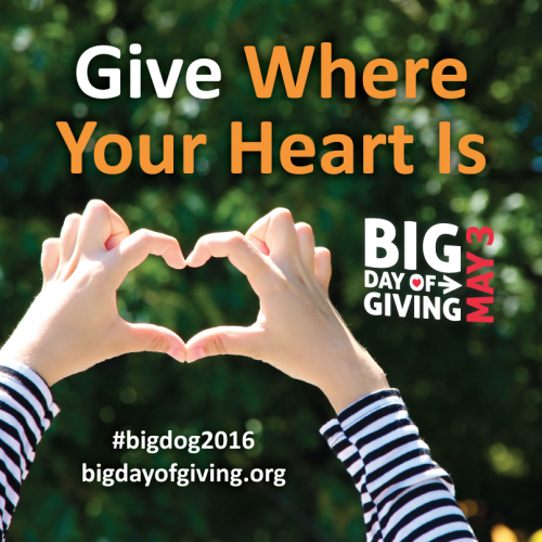 Image of Support Stanford Youth Solutions on Big Day of Giving!